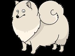 seguro-perro-grande