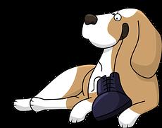 seguro-veterinario-reembolso